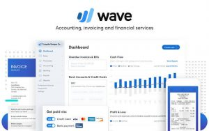 using wave in accounting